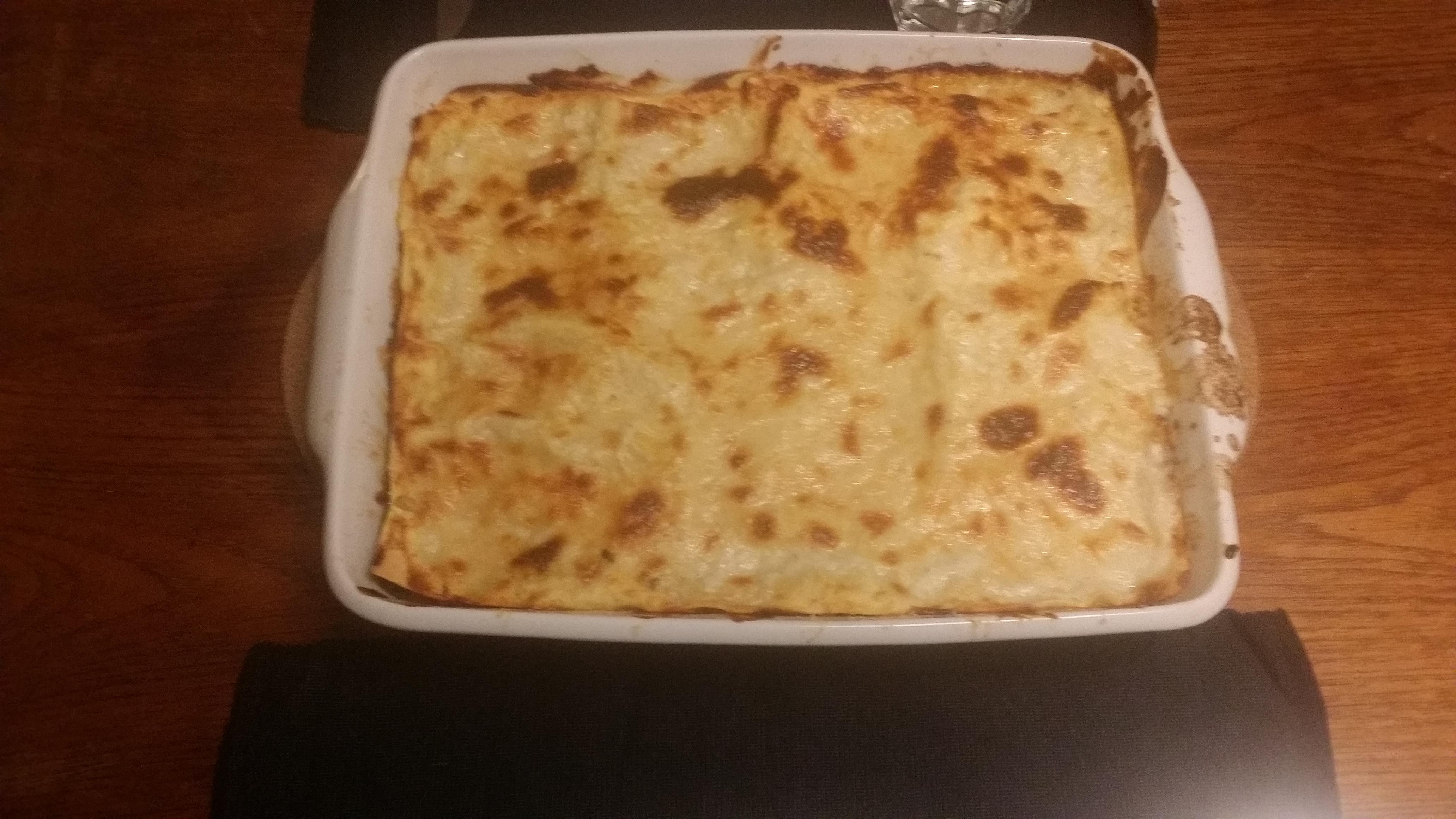 Lasagne – Besøg af en orange kat…